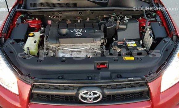 Buy Import Toyota RAV4 Red Car in Import - Dubai in Enga