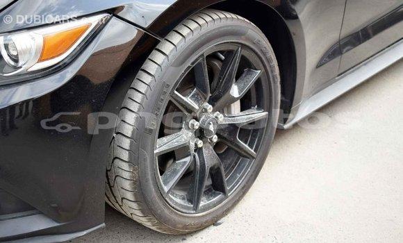 Buy Import Ford Mustang Black Car in Import - Dubai in Enga