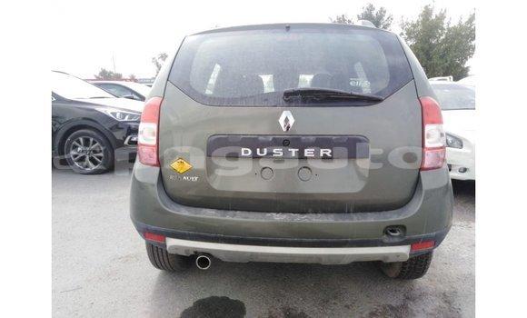 Buy Import Renault Duster Green Car in Import - Dubai in Enga
