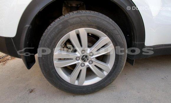 Buy Import Kia Sportage White Car in Import - Dubai in Enga