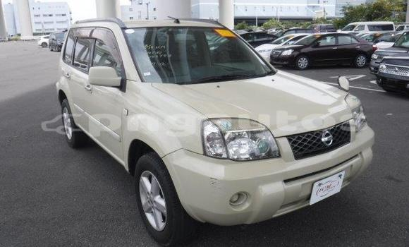 Buy Import Nissan X–Trail Beige Car in Port Moresby in National Capital District