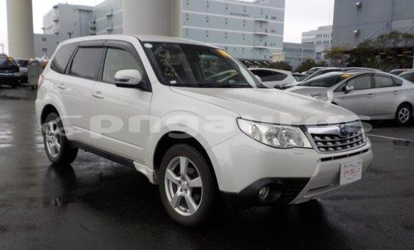 Buy Import Subaru Forester White Car in Port Moresby in National Capital District