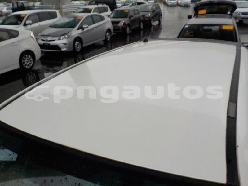 Big with watermark t