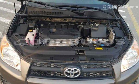 Buy Import Toyota 4Runner Brown Car in Import - Dubai in Enga