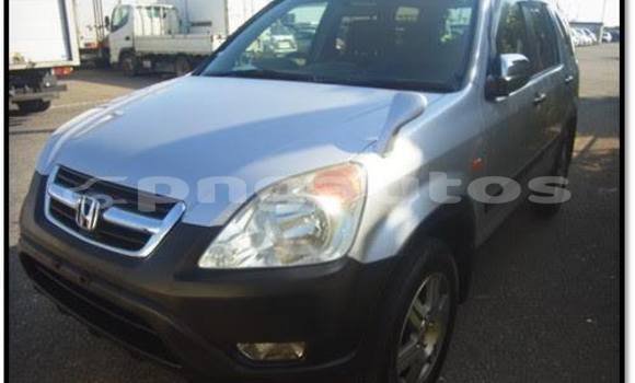 Buy Used Honda CRV Other Car in Lorengau in Manus