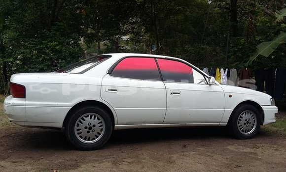 Buy Used Toyota Vista Other Car in Laiagam in Enga