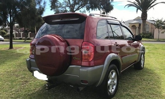 Buy Used Toyota RAV4 Other Car in Kokoda in Oro