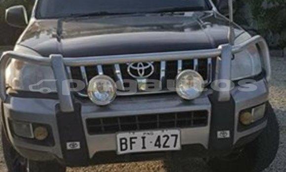 Buy Used Toyota LandcruiserPrado Other Car in Wau in Morobe