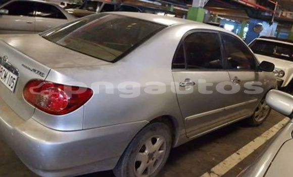 Buy Used Toyota Corolla Other Car in Porgera in Enga