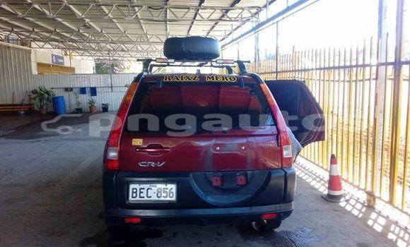 Buy Used Honda CRV Other Car in Bulolo in Morobe