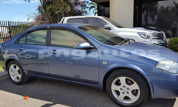 Buy Used Nissan Primera Other Car in Porgera in Enga