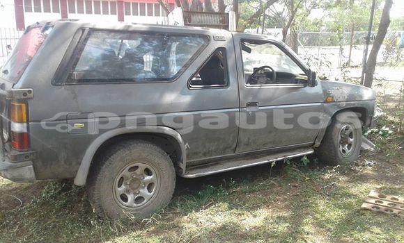Buy Used Nissan Terrano Other Car in Lorengau in Manus