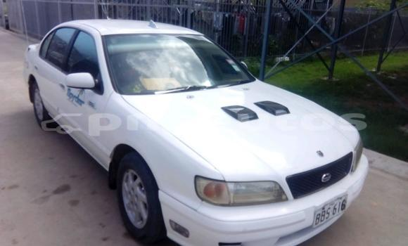 Buy Used Nissan Cefiro Other Car in Kerema in Gulf