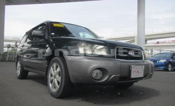 Buy Used Subaru Forester Other Car in Madang in Madang