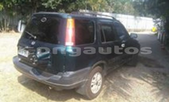 Buy Used Honda CRV Other Car in Monara in Madang