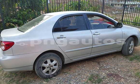 Buy Used Toyota Corolla Other Car in Lae in Morobe