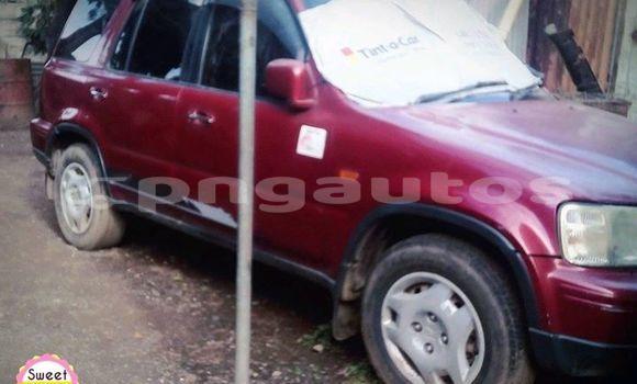 Buy Used Honda CRV Red Car in Lae in Morobe
