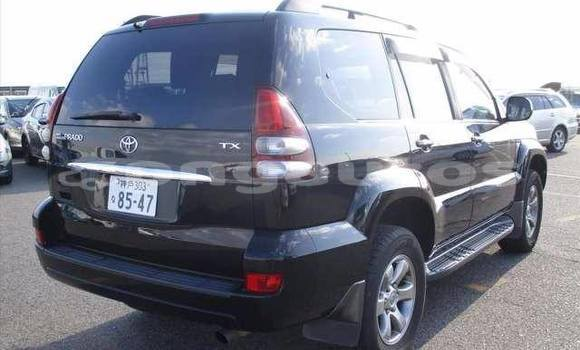 Buy Used Toyota LandcruiserPrado Other Car in Porgera in Enga