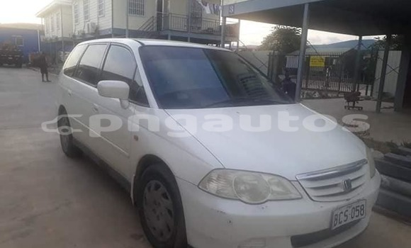 Buy Imported Honda Odyssey White Car in Port Moresby in National Capital District