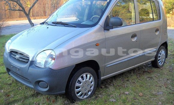 Buy Used Hyundai Accent Other Car in Monara in Madang