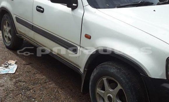 Buy Used Honda CR-V White Car in Port Moresby in National Capital District
