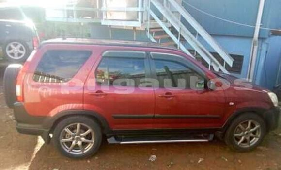 Buy Used Honda CRV Red Car in Port Moresby in National Capital District