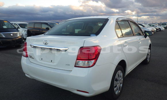 Buy Used Toyota Axio White Car in Port Moresby in National Capital District