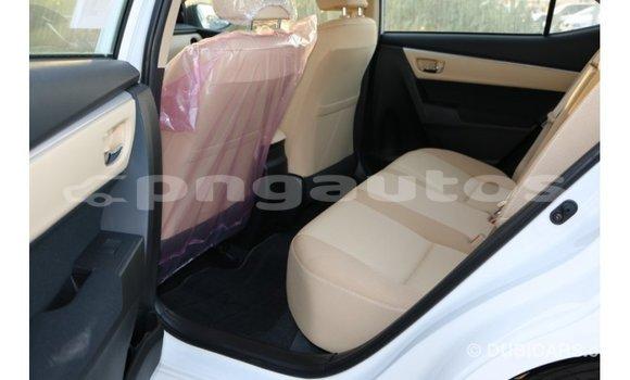 Buy Import Toyota Corolla White Car in Import - Dubai in Enga