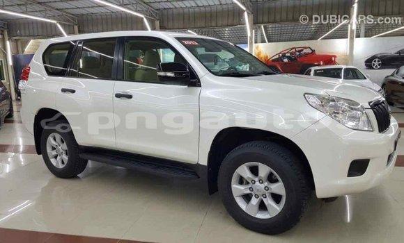 Buy Import Toyota Prado White Car in Import - Dubai in Enga