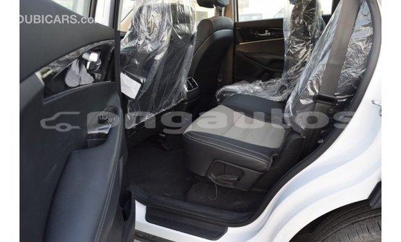 Buy Import Kia Sorento White Car in Import - Dubai in Enga