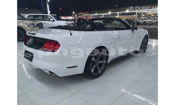 Buy Import Ford Mustang White Car in Import - Dubai in Enga