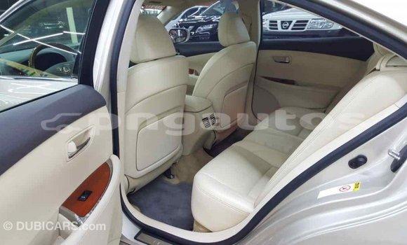 Buy Import Lexus 350 Other Car in Import - Dubai in Enga