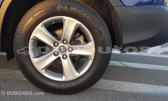 Buy Import Toyota RAV4 Other Car in Import - Dubai in Enga