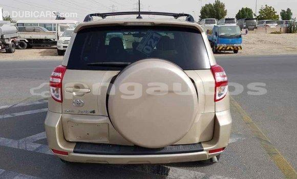 Buy Import Toyota RAV 4 Other Car in Import - Dubai in Enga